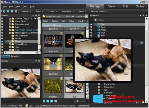 Snimak zaslona ACDSee Photo Manager Windows 8