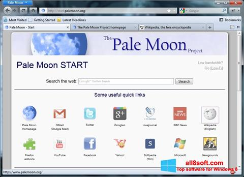 Snimak zaslona Pale Moon Windows 8