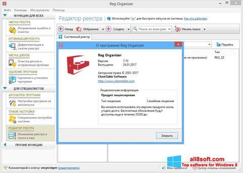 Snimak zaslona Reg Organizer Windows 8