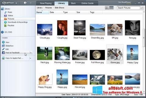 Snimak zaslona RealPlayer Windows 8