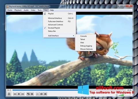 Snimak zaslona VLC Media Player Windows 8